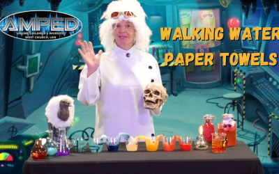 Walking Water Paper Towels